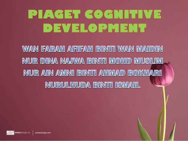 Neo-Piagetian theories of cognitive development
