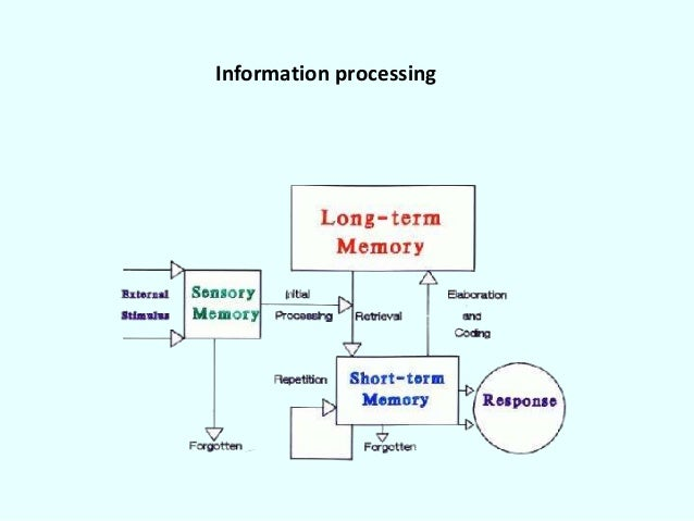 piaget information processing theory
