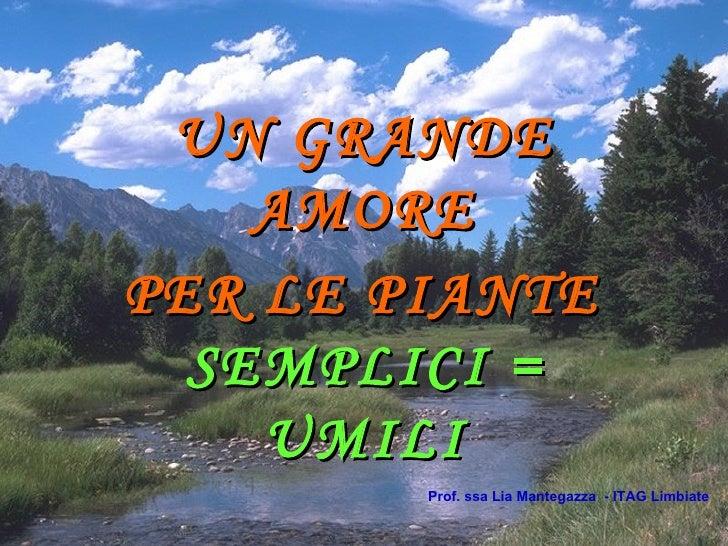 UN GRANDE AMORE  PER LE PIANTE   SEMPLICI = UMILI Prof. ssa Lia Mantegazza  - ITAG Limbiate