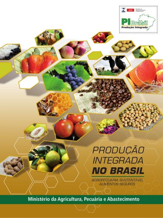 PRODUÇÃOINTEGRADANOBRASIL 2008/2009 9 788599 851500 ISBN 978-85-99851-50-0