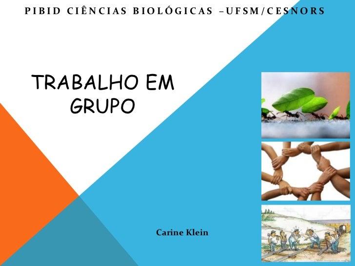 PIBID CIÊNCIAS BIOLÓGICAS –UFSM/CESNORSTRABALHO EM   GRUPO                 Carine Klein
