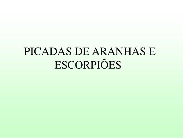 PICADAS DE ARANHAS E ESCORPIÕES