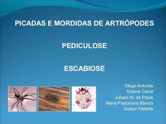 PICADAS E MORDIDAS DE ARTRÓPODES          PEDICULOSE           ESCABIOSE                                Diego Antunes     ...