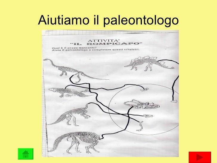 Aiutiamo il paleontologo