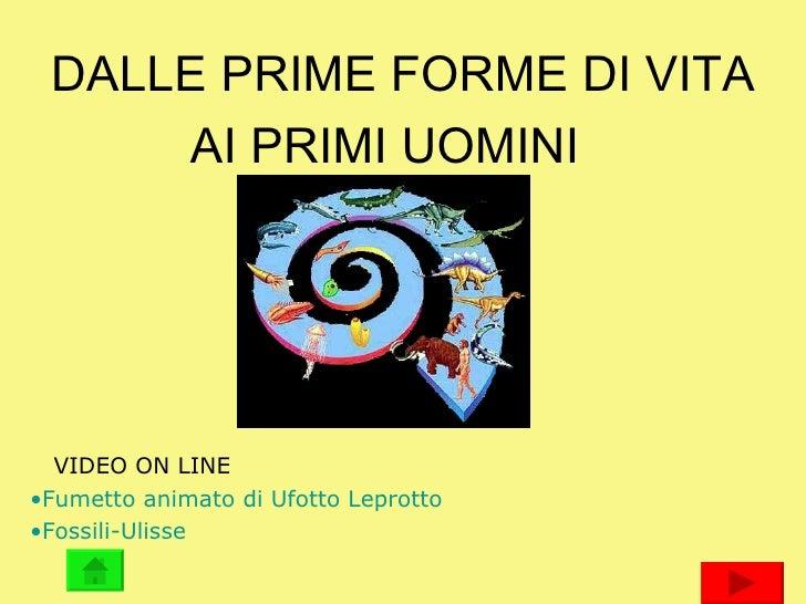 DALLE PRIME FORME DI VITA AI PRIMI UOMINI <ul><li>VIDEO ON LINE </li></ul><ul><li>Fumetto animato di  Ufotto  Leprotto </l...