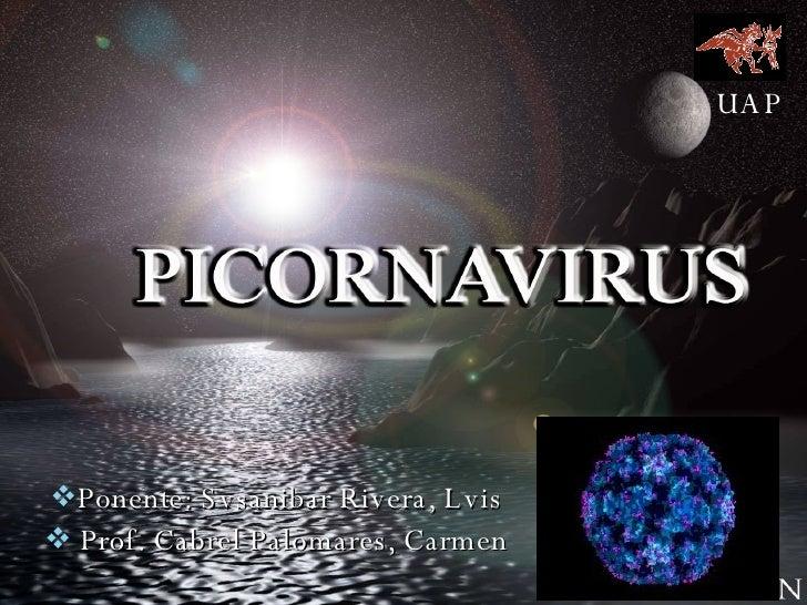 <ul><li>Ponente: Svsanibar Rivera, Lvis </li></ul><ul><li>Prof. Cabrel Palomares, Carmen </li></ul>UAP