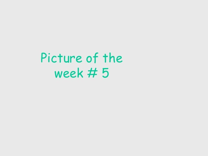 Picture of the week # 5