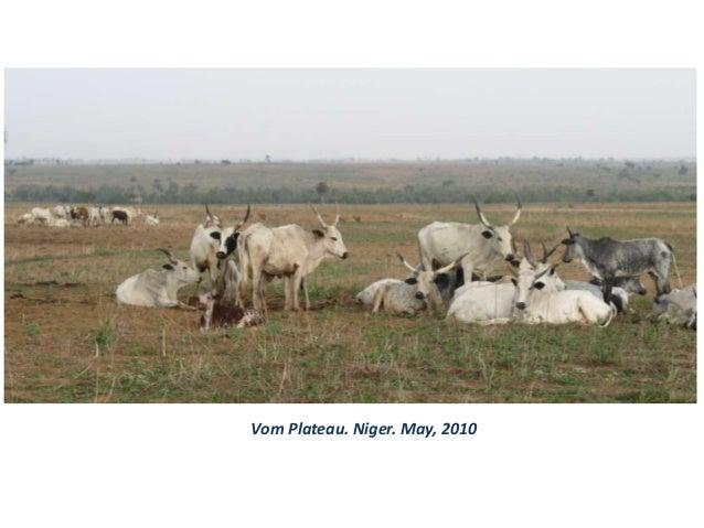Vom Plateau. Niger. May, 2010