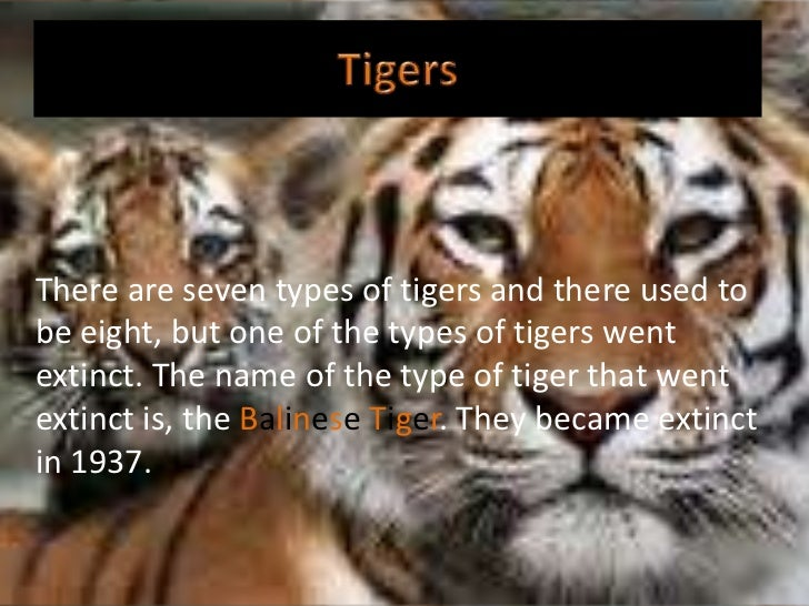 There are seven types of tigers and there used tobe eight, but one of the types of tigers wentextinct. The name of the typ...