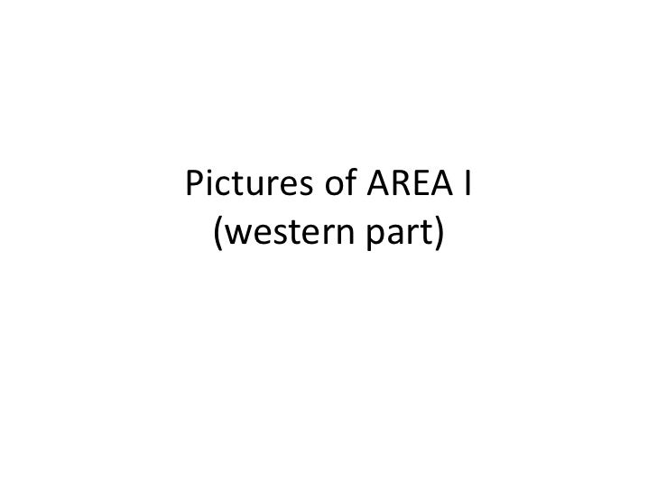 Pictures of AREA I  (western part)