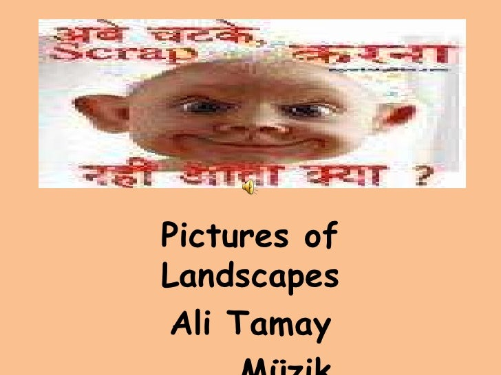Pictures of Landscapes Ali Tamay