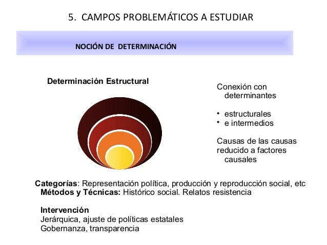 5. CAMPOS PROBLEMÁTICOS A ESTUDIAR NOCIÓN DE DETERMINACIÓN  Determinación Estructural  Conexión con determinantes    est...