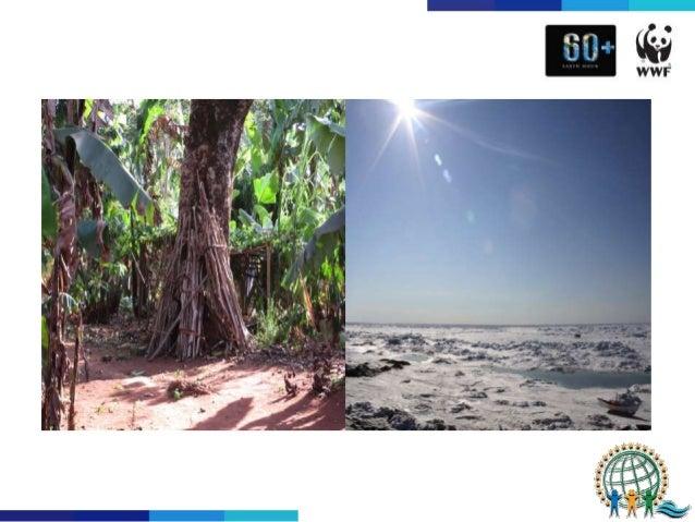 WWF/Earth Hour@PIDF (Pacific Islands Development Forum), Fiji, September 2015