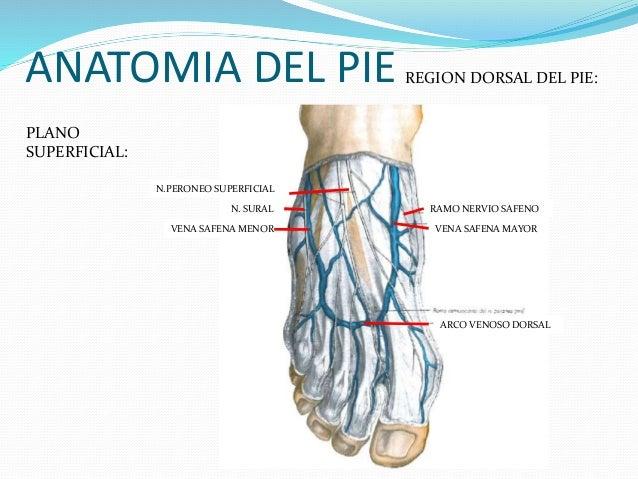 El período postoperacional en varikoz de los pies