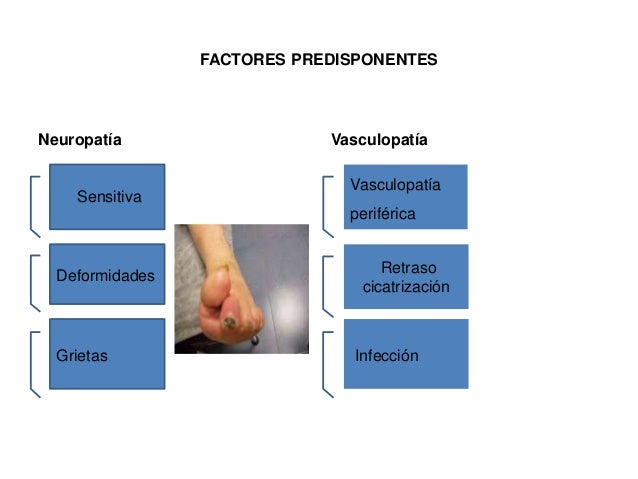 FACTORES PREDISPONENTES  Neuropatía Vasculopatía  Sensitiva  Deformidades  Grietas  Vasculopatía  periférica  Retraso  cic...