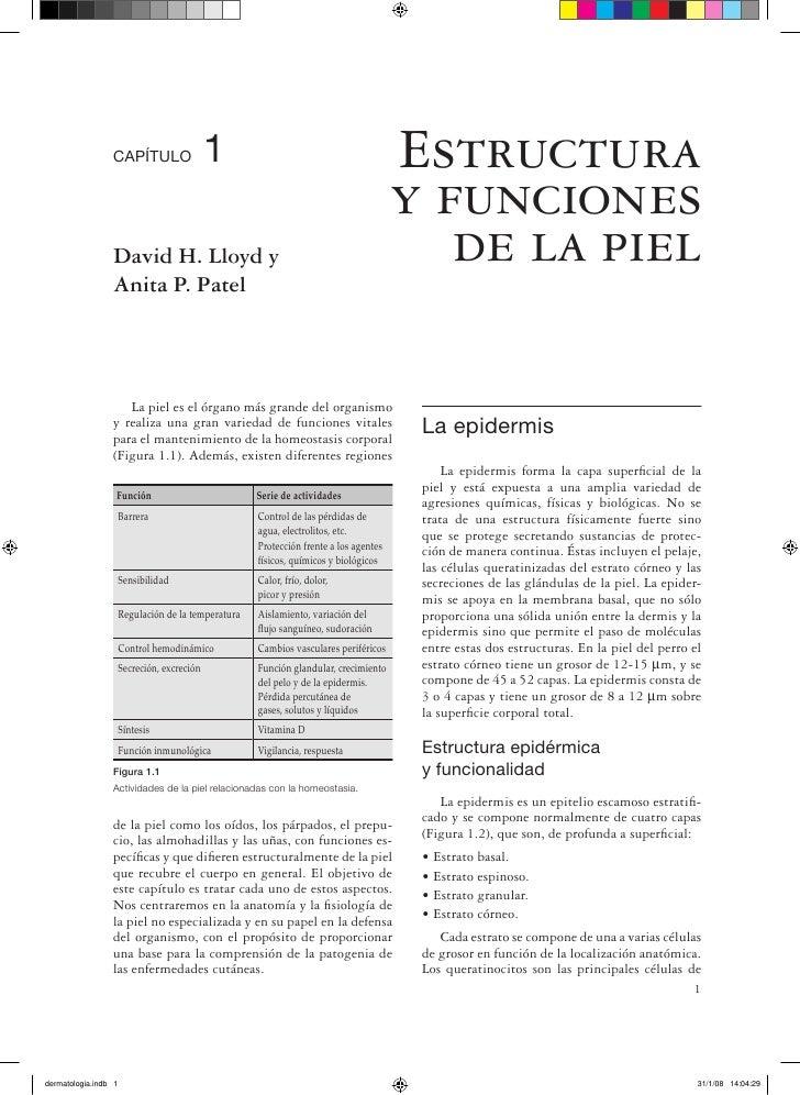 CAPÍTULO                    1                                         Estructura                                          ...