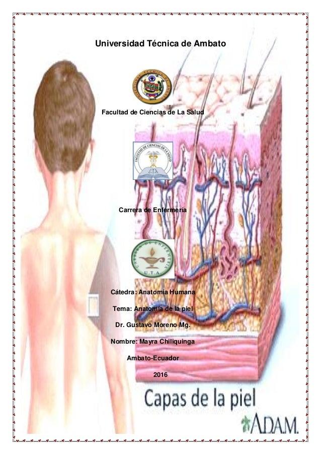 Universidad Técnica de Ambato Facultad de Ciencias de La Salud Carrera de Enfermería Cátedra: Anatomía Humana Tema: Anatom...