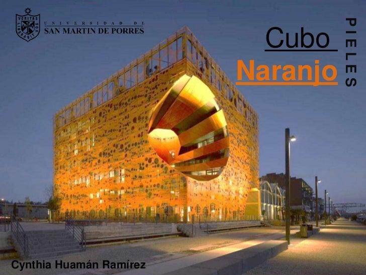 PIELES                           Cubo                         NaranjoCynthia Huamán Ramírez