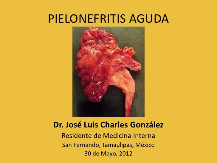 PIELONEFRITIS AGUDADr. José Luis Charles González  Residente de Medicina Interna  San Fernando, Tamaulipas, México        ...
