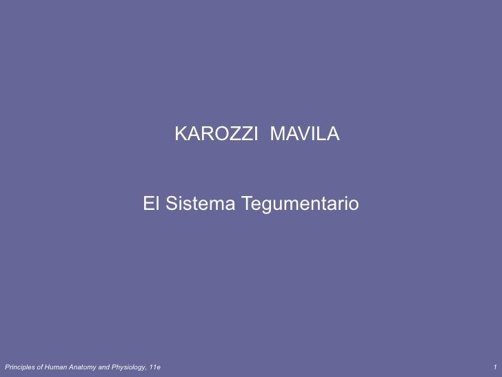 KAROZZI MAVILA                                         El Sistema TegumentarioPrinciples of Human Anatomy and Physiology, ...