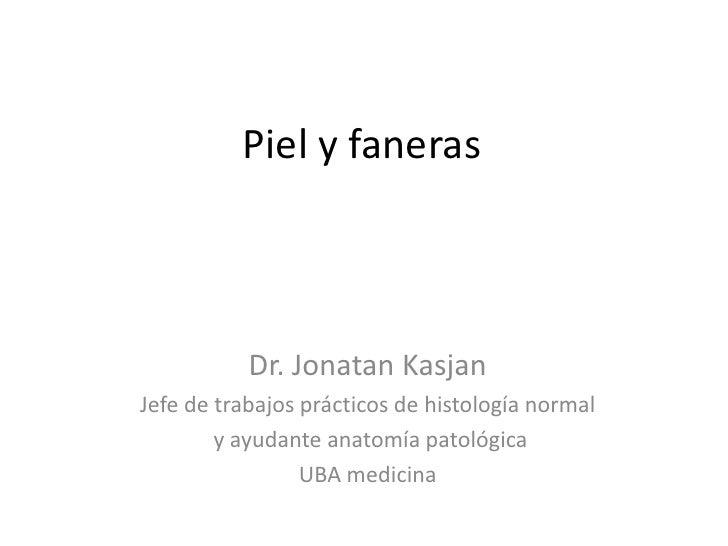 Piel y faneras           Dr. Jonatan KasjanJefe de trabajos prácticos de histología normal        y ayudante anatomía pato...