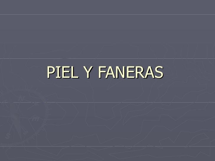 PIEL Y FANERAS