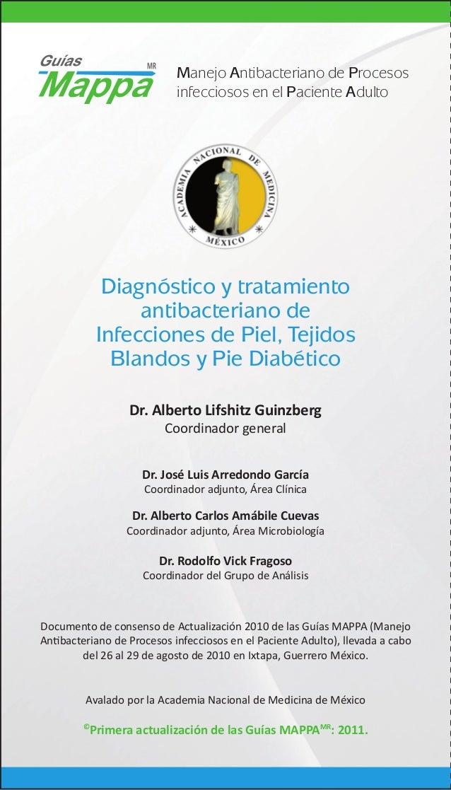 Guias mappa piel y pie diabetico for Tratamiento antibacteriano