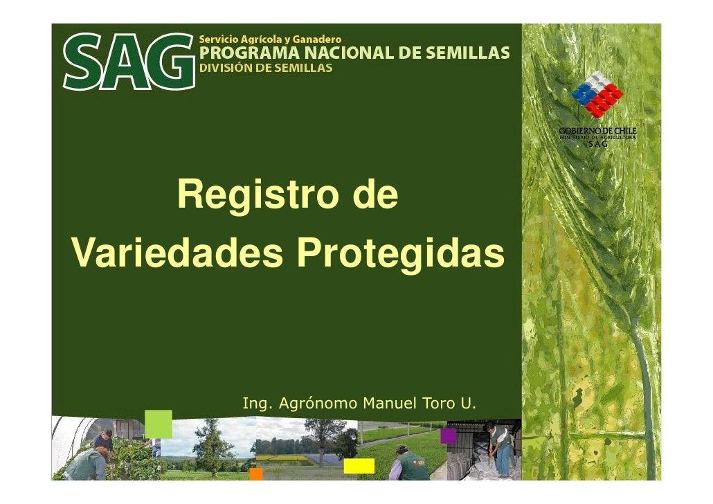 Registro de Variedades Protegidas           Ing. Agrónomo Manuel Toro U.