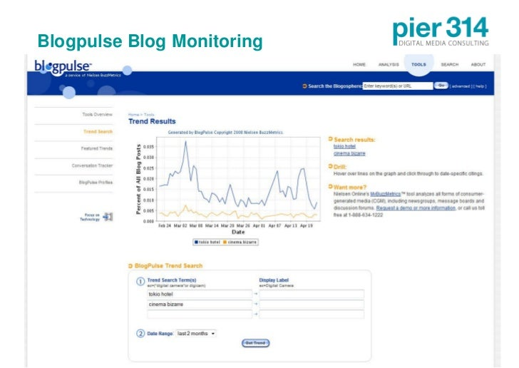 Blogpulse Blog Monitoring     © 2009 pier314 GmbH          20