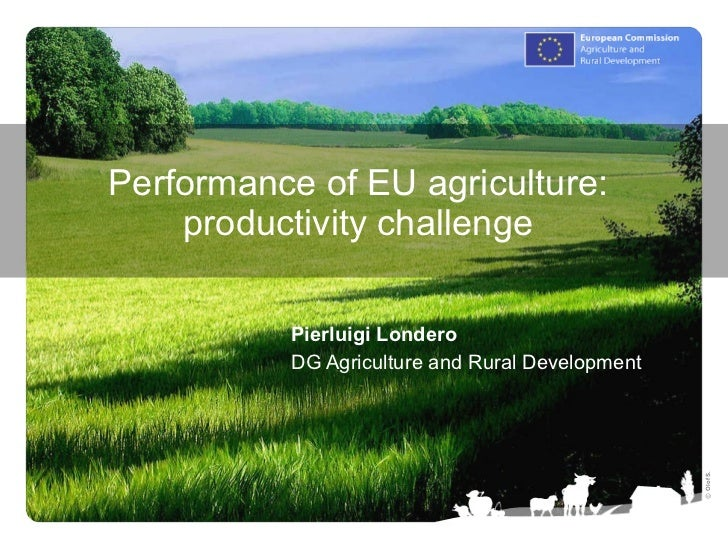 Performance of EU agriculture: productivity challenge Pierluigi Londero DG Agriculture and Rural Development