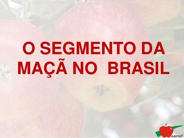 O SEGMENTO DA MAÇÃ NO BRASIL