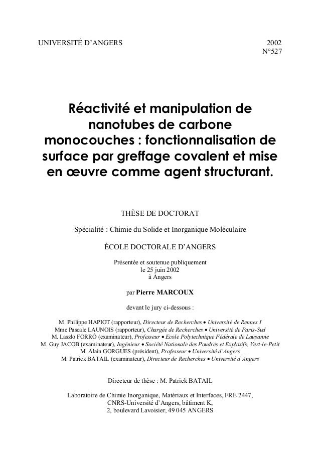 UNIVERSITÉ D'ANGERS  2002 N°527  Réactivité et manipulation de nanotubes de carbone monocouches : fonctionnalisation de su...