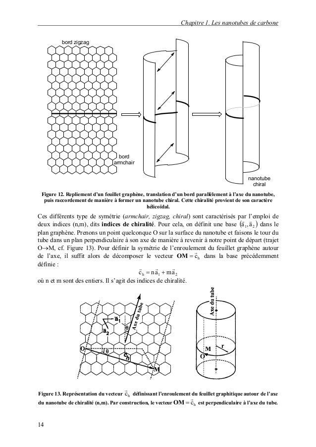 R 233 Activit 233 Et Manipulation De Nanotubes De Carbone