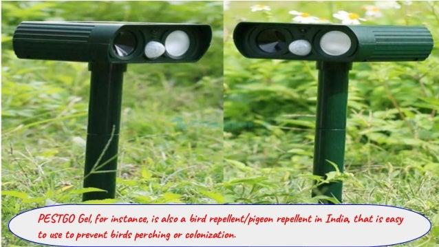 Pigeon Repellent India – Buy A Variety of Bird Gel Spikes Online