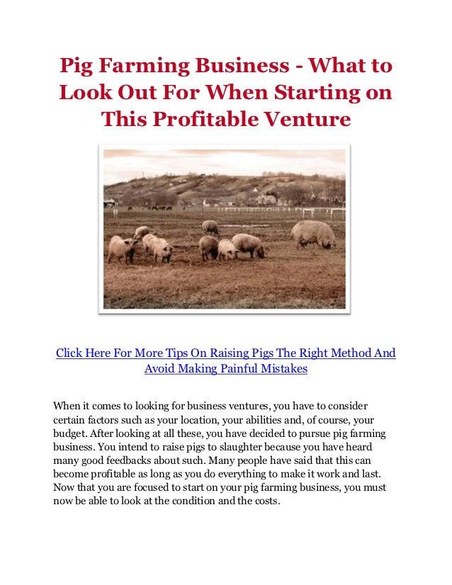 2018 Pig Farming Business Plan In Nigeria PDF/ Feasibility Study Sample