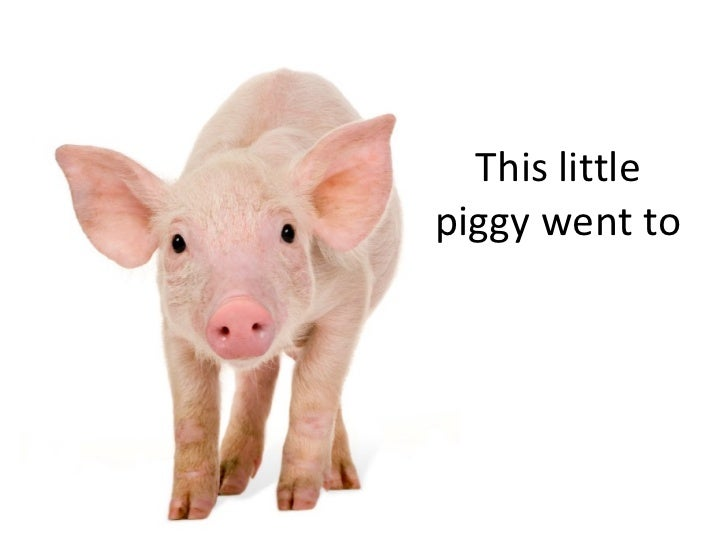 This little piggy went to