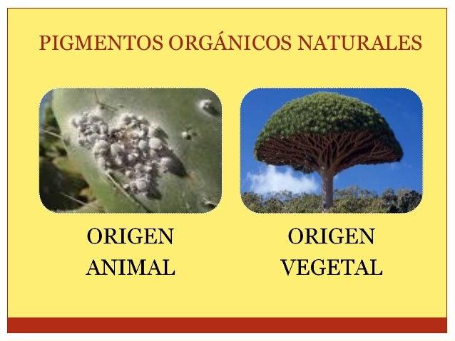 PIGMENTOS ORGÁNICOS NATURAL/VEGETAL PIMIENTO PÁPRIKA Planta de originaria de América Central Extractos de color rojo  NEGR...
