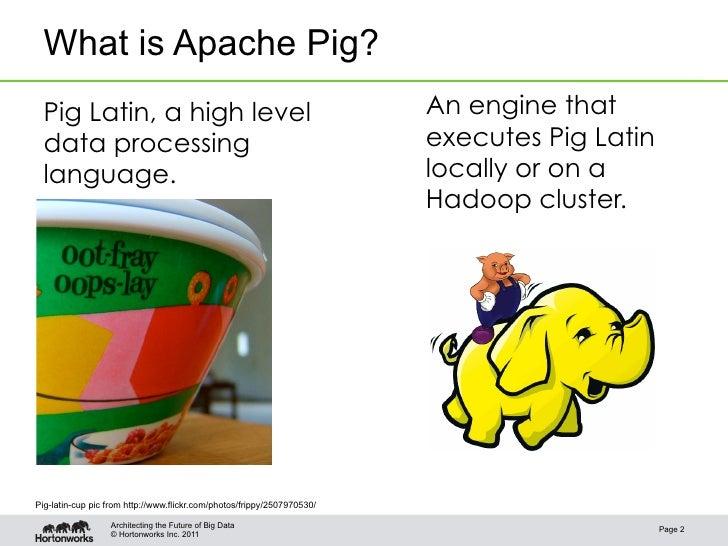 Pig programming is fun Slide 2