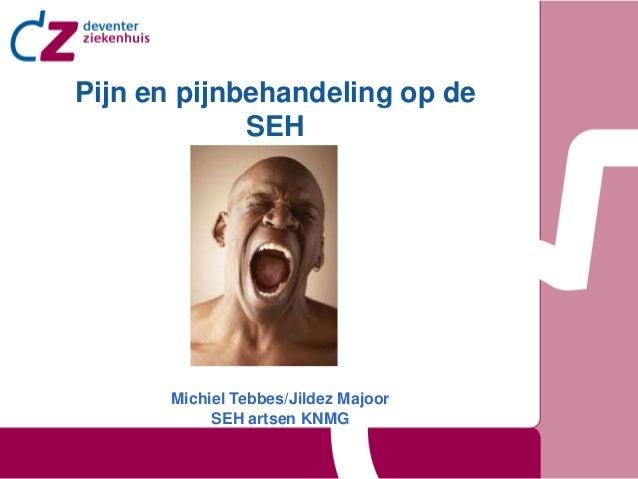 Pijn en pijnbehandeling op de             SEH      Michiel Tebbes/Jildez Majoor           SEH artsen KNMG
