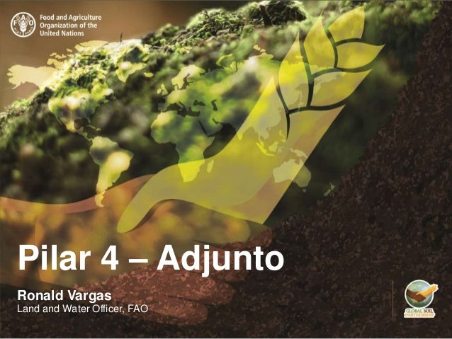 Pilar 4 – Adjunto Ronald Vargas Land and Water Officer, FAO