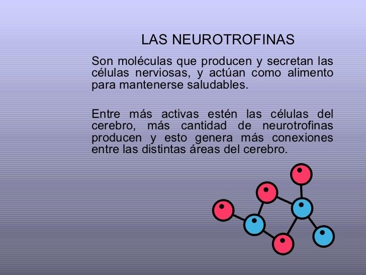 LAS NEUROTROFINAS   Son moléculas que producen y secretan las células nerviosas, y actúan como alimento para mantenerse sa...