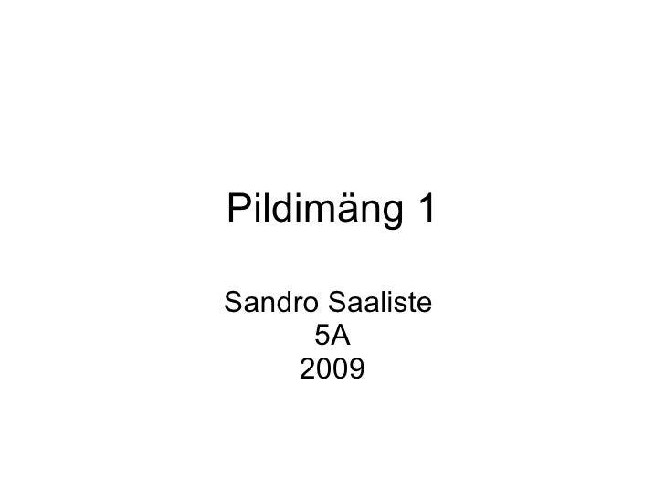 Pildimäng 1 Sandro Saaliste  5A 2009