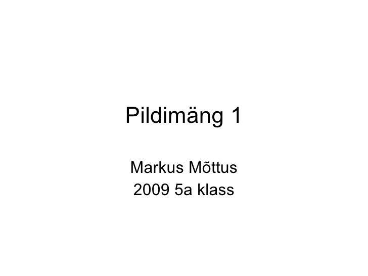 Pildimäng 1 Markus Mõttus 2009 5a klass