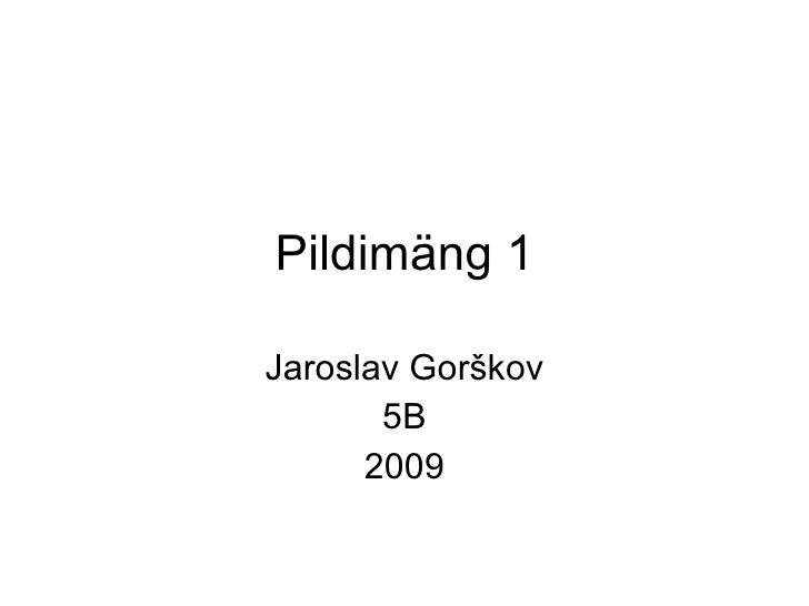 Pildimäng 1 Jaroslav Gorškov 5B 2009
