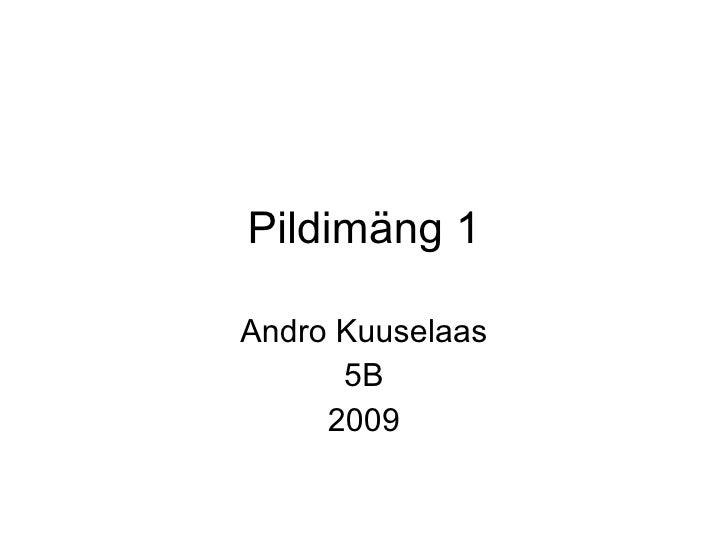 Pildimäng 1 Andro Kuuselaas 5B 2009