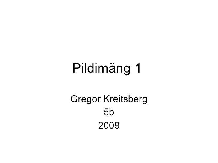 Pildimäng 1  Gregor Kreitsberg 5b 2009