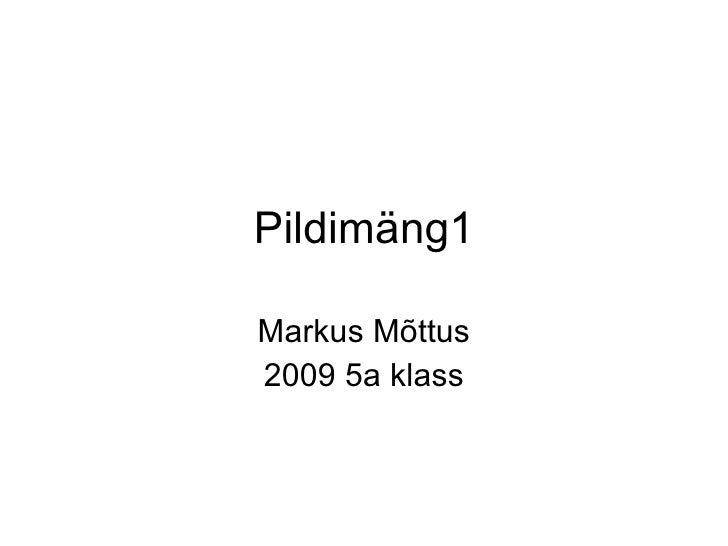 Pildimäng1 Markus Mõttus 2009 5a klass