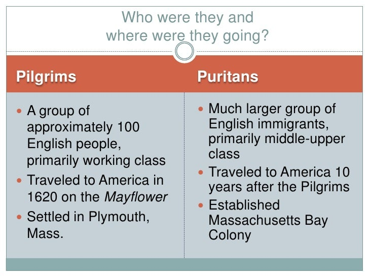 Pilgrims Vs Puritans