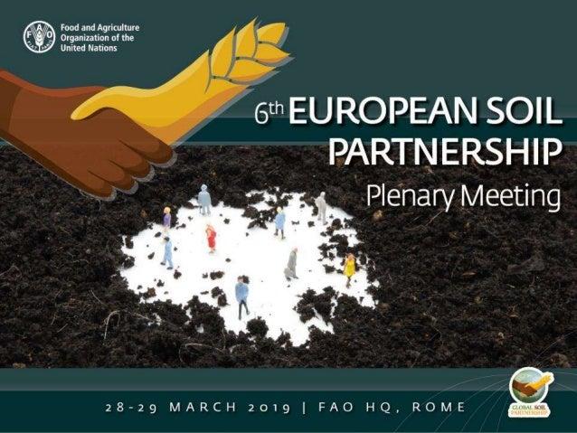 GSP developments of regional interest for Pillar 2 Ms. Lucrezia Caon & Ms. Isabelle Verbeke GSP Secretariat