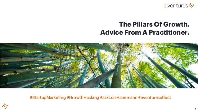 1 The Pillars Of Growth. Advice From A Practitioner. #StartupMarketing #GrowthHacking #askLuisHanemann #eventureseffect